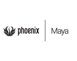 PhoenixFD与DMM 工作流程