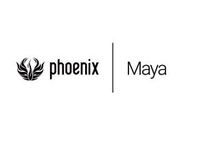 PhoenixFD 3.0 基础教程